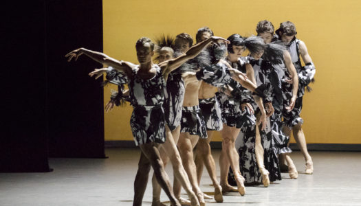 Boys and Girls at New York City Ballet